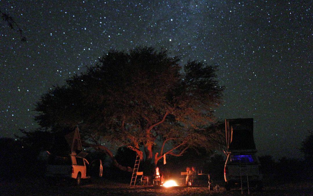 Sandtracks II – Dampfnudeln in der Kalahari